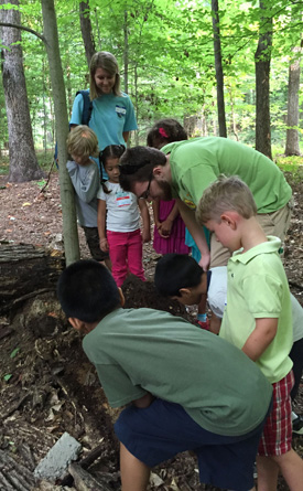 Summer camp group exploring nature